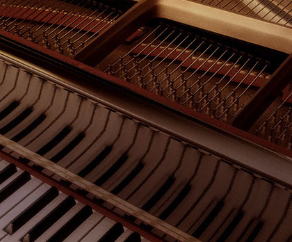 Our variety of plans, offers and services guarntee satisfaction of all piano lovers.
